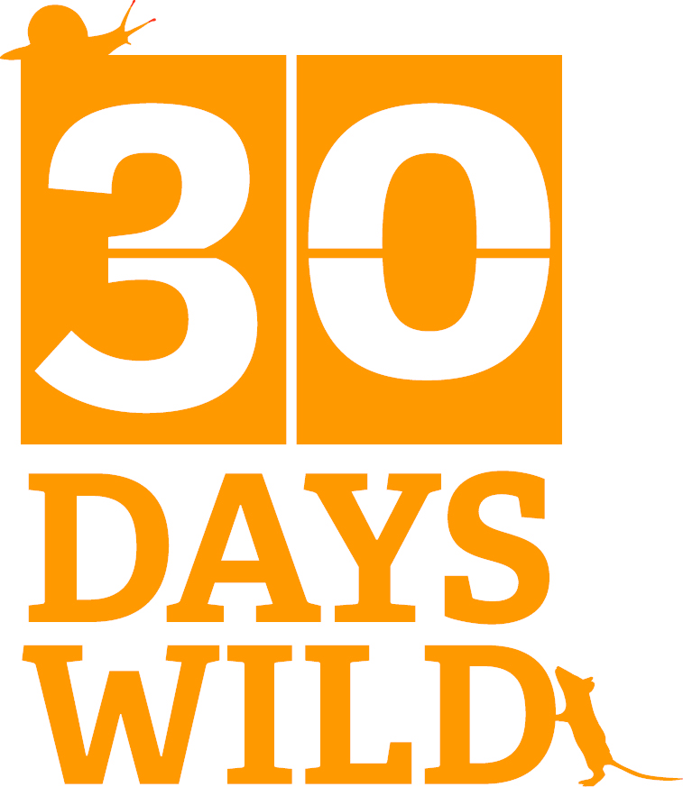 30DAYSWILD_ID2 lightorange