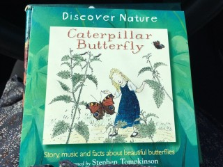 CaterpillarButterflyCD