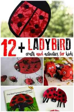Ladybird12