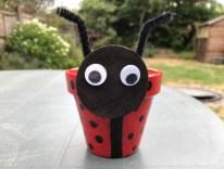 LadybirdFlowerPot